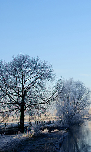 crooked_rhine_river__winter-wallpaper-2560x1600.jpg